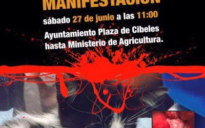 Demo auf der Plaza de Cibeles