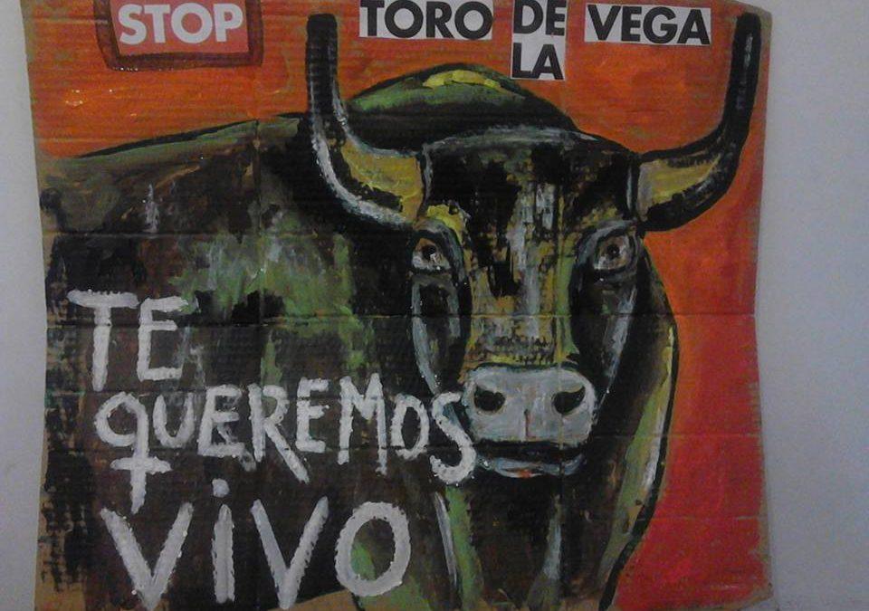 """Demonstration """"Toro de la Vega"""""""