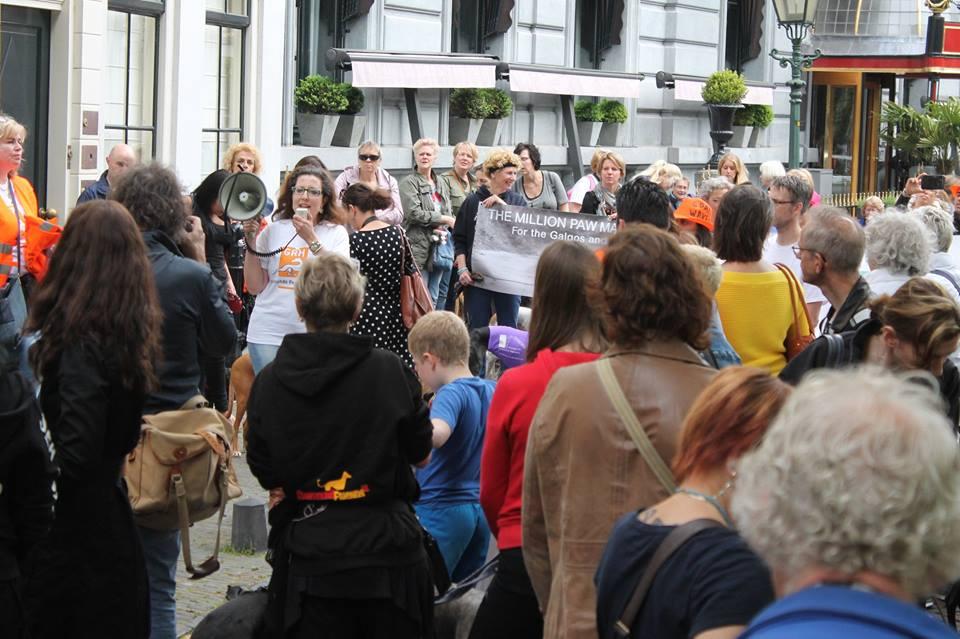 Protestmarsch in Den Haag