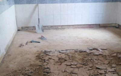Großer Renovierungsmarathon im Tierheim PROA